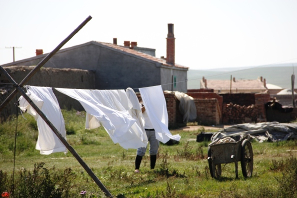 Small clothesline1