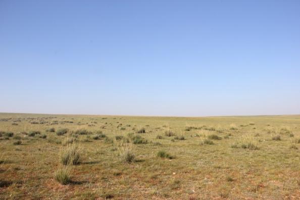 Small plains
