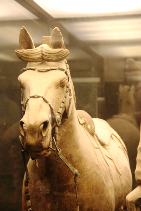 Terracotta Warriors Horse