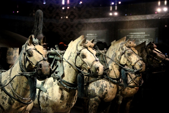Terracotta Warriors Horses
